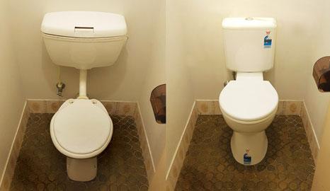 Flush Worries Away